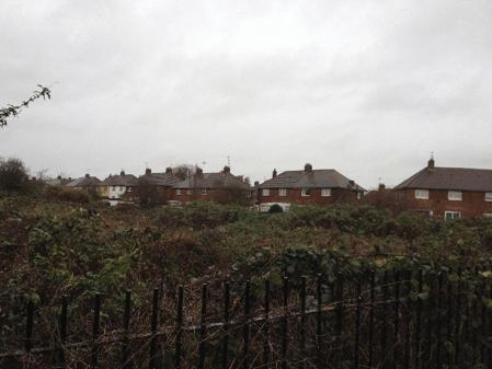 Site for the Hillside Garden