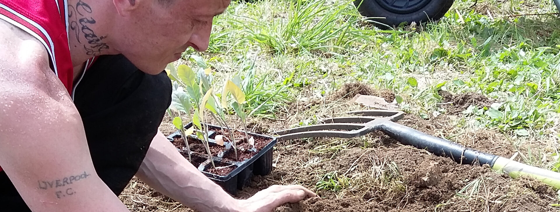 Get Into Gardening